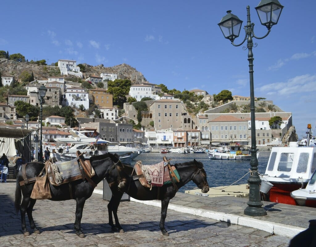 Donkeys are the sole means of transport on the island of Hydra - no cars at all!
